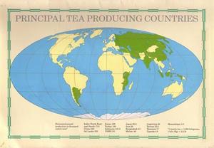 お茶の栽培地域